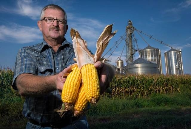 a farmer who grows genetically engineered corn is experiencing-4