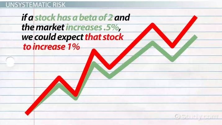 a stocks beta is more relevant as a measure of risk to an investor who holds-0