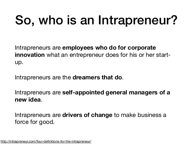 an intrapreneur is the creative person who starts and manages a nonprofit organization.-3