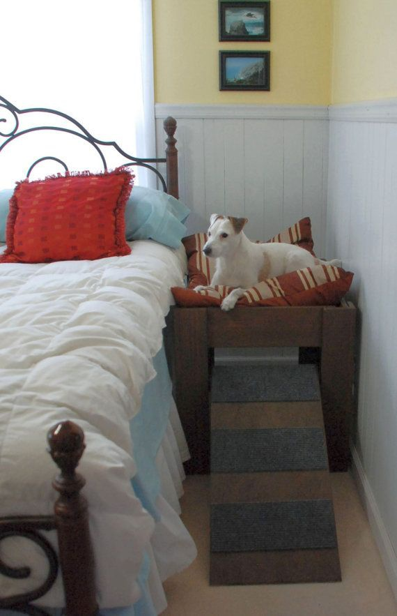 dog bed next to bed-2