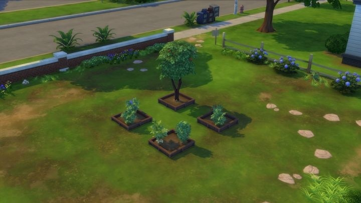 how to get strawberries in sims 4-1