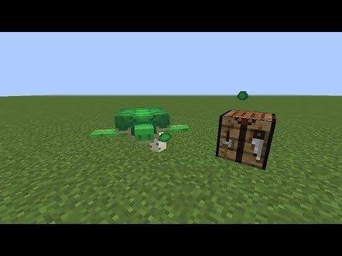 how to get turtle shells in minecraft-1