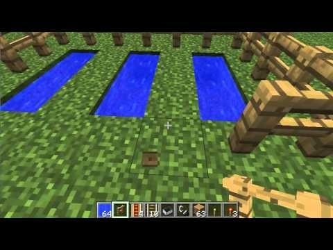 how to grow sugar cane in minecraft-1