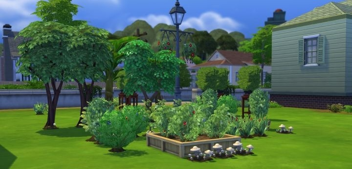 how to plant seeds in sims 4-3