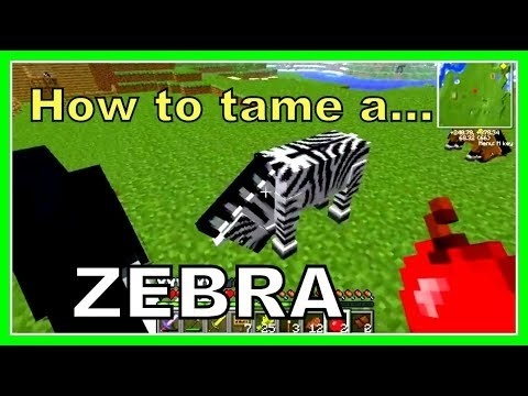 how to tame a zebra in mo creatures-0