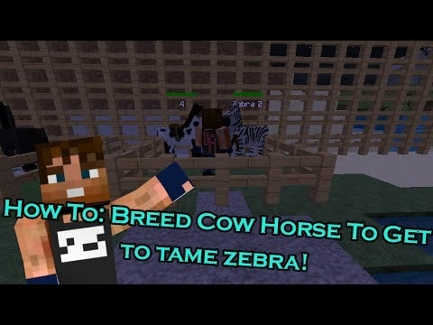 how to tame a zebra in mo creatures-2