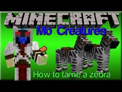 how to tame a zebra in mo creatures-4