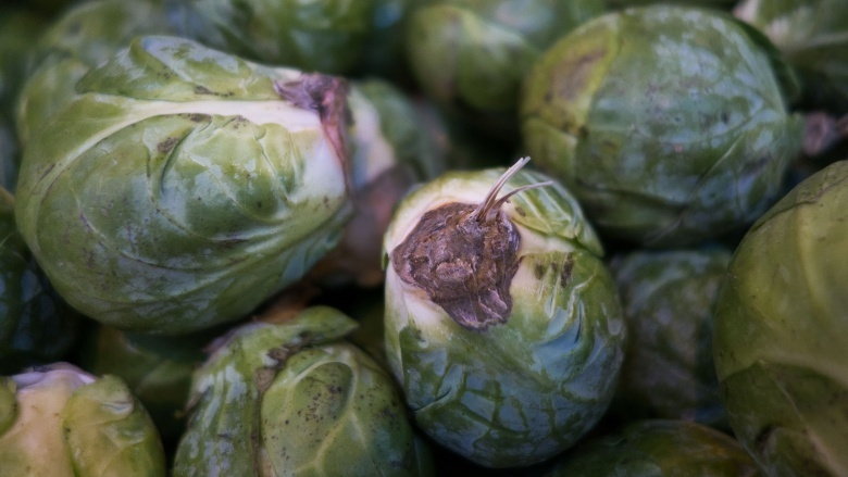 how to tell if brussel sprouts are bad-2