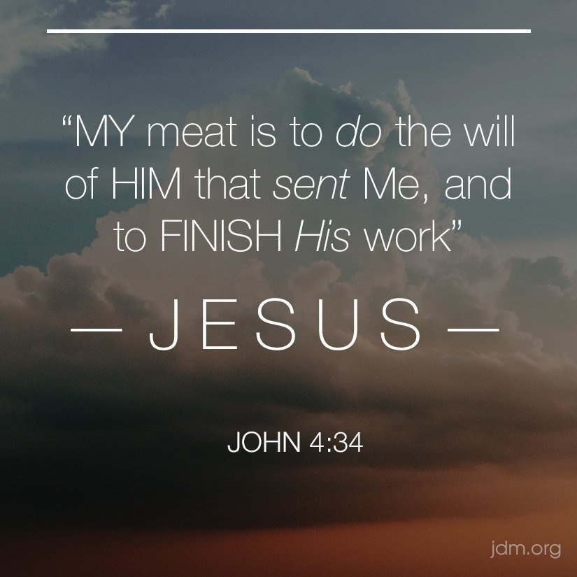 my meat is to do the will of him who sent me-0