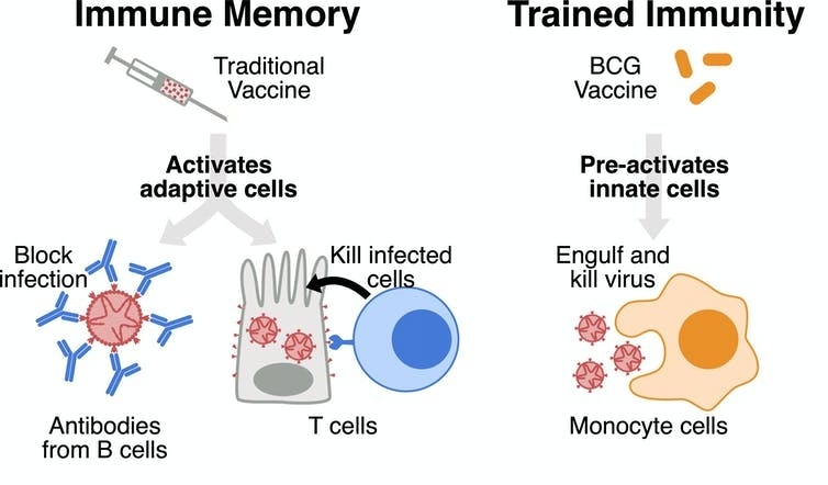 one sign of a virus infection is that available memory is less than what should be available.-0