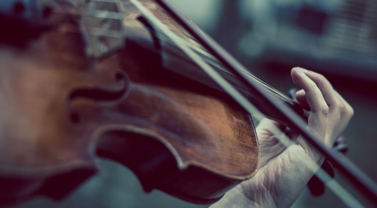 the shape of the sound waves produced by a violin is what makes it sound like a violin.-1