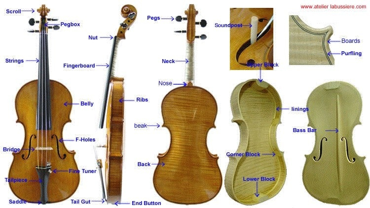 the shape of the sound waves produced by a violin is what makes it sound like a violin.-3