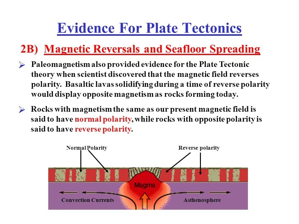 what is the importance of magnetic reversals to the theory of plate tectonics?-1