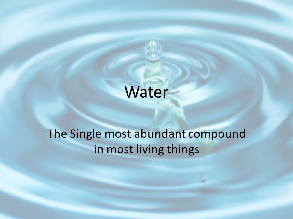 what is the most abundant compound in most living things-0