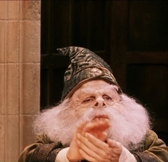who is the head of the ravenclaw house-2
