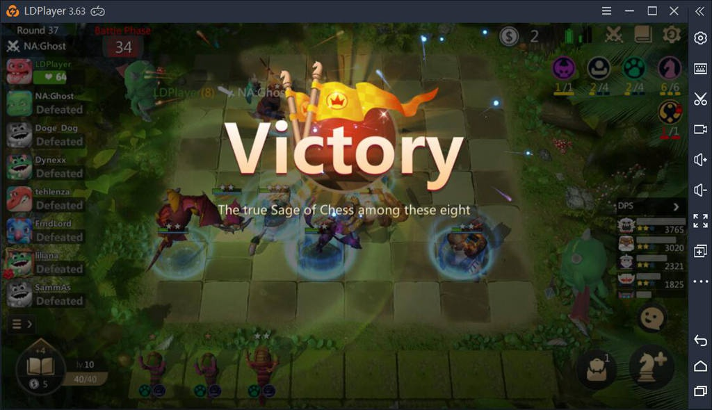 how to play autochess-8