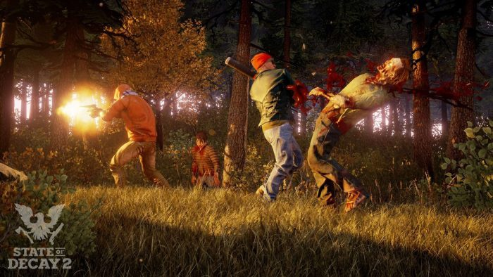state of decay 2 size-0