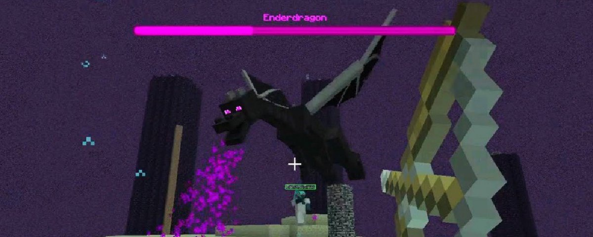 fighting the ender dragon-1