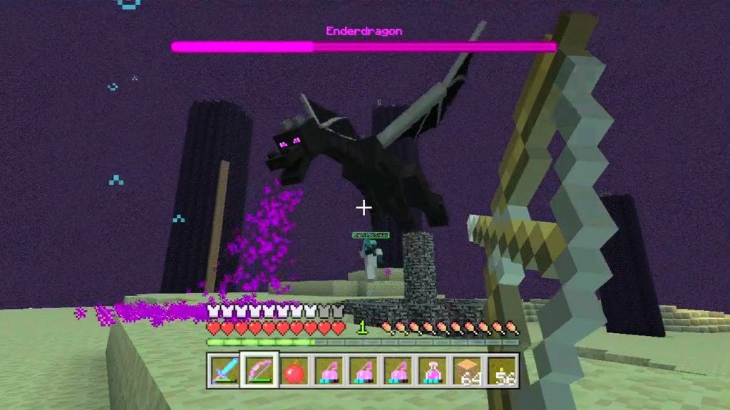 fighting the ender dragon-3