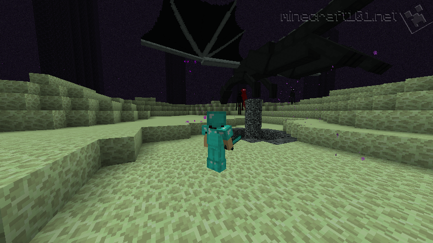fighting the ender dragon-9