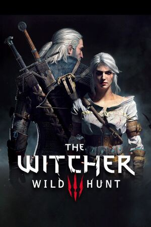 the witcher the wild hunt-8