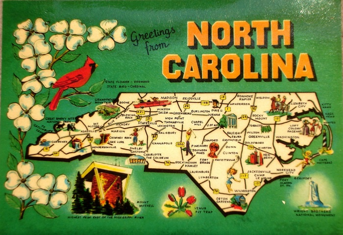 video game companies in nc-4