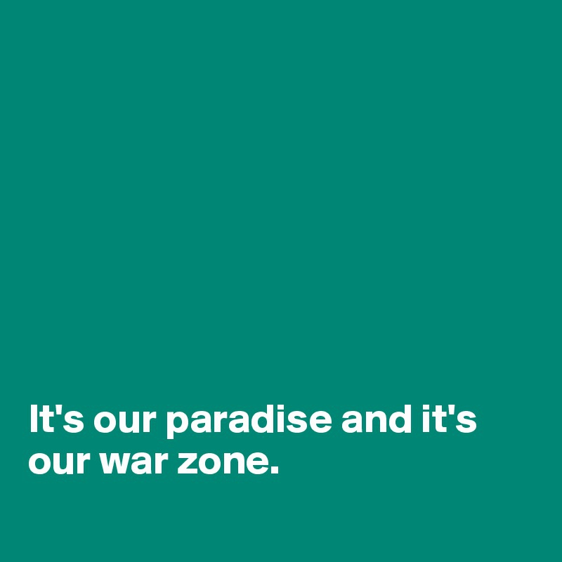 paradise and war zone-4